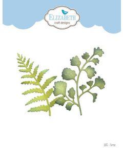 Rezalna šablona - Ferns - zelenje, praprot - 6,9x8,9cm (največja) - Elizabeth craft designs