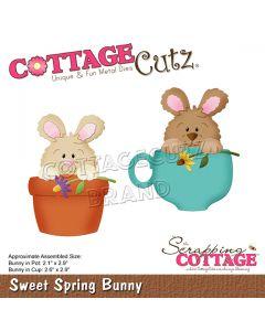 Rezalna šablona CottageCutz Sweet Spring Bunny