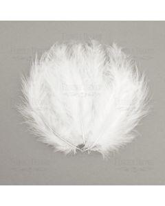 Dekorativno perje - mini - White - 5-12cm - 10 kos