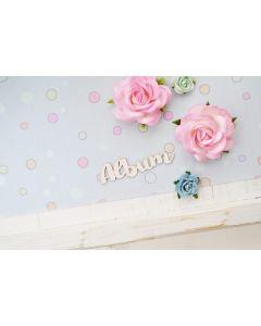 Laserski izrez - napis ALBUM mail - 6x1,5cm - KPMK