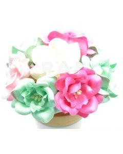 Magnolije - roza/mint/bele - 4,5cm - 10 kos