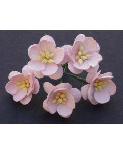 Češnjevi cvetovi - bledo roza - 25mm - 50 kos