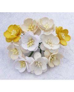 Češnjevi cvetovi - beli/krem - 25mm - 50 kos