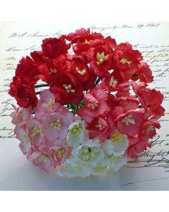 Češnjevi cvetovi - rdeči/beli - 25mm - 50 kos