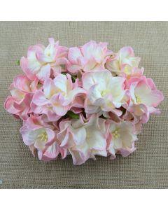 Gardenije - baby roza/krem - 35mm - 5 kos